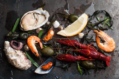 foto per ristoranti milano